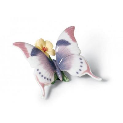 Бабочка-ни минуты покоя
